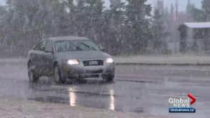 Edmontonians surprised with late summer snowfall