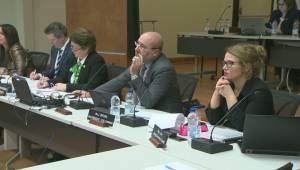 Quebec announces plan to investigate EMSB