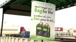 Moncton high school student wants plastic bag ban