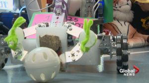 Lethbridge students show of robotic skills