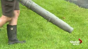 Beaconsfield residents divided over leaf blower ban