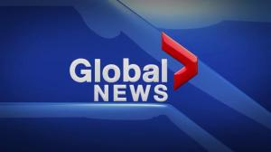 Global News at 5 Edmonton: Nov. 28
