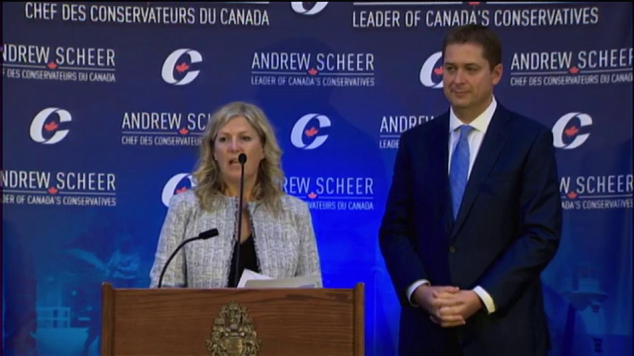 Liberal MP Leona Alleslev crosses the floor to join Conservatives