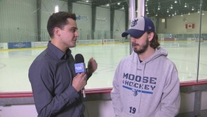 Manitoba Moose playoff preview: Nic Petan