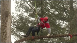 Fleming College students reach new heights at tree climbing competition