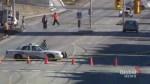 Female pedestrian dies after being struck by vehicle