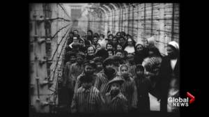 New evidence allies knew of WWII genocide by 1942 (02:04)
