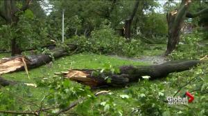Tornado hits Quebec during intense storm