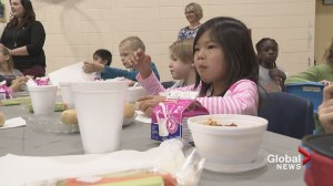 'It's hard to learn when you're hungry': Alberta launches school nutrition program