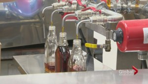 Maple syrup production down in South NB, but average overall