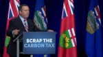 UCP leader Jason Kenney says carbon tax is the 'biggest lie' in Alberta history
