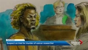 1st-degree murder trial begins for man accused of stabbing Toronto cancer researcher