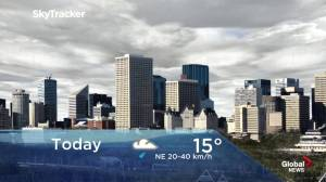Edmonton early morning weather forecast: Thursday, June 20, 2019
