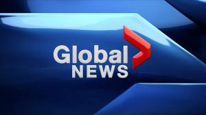 Global News at 6: May 21, 2019