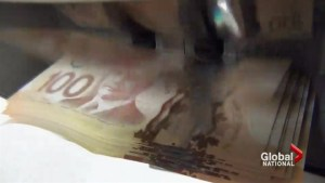 Can the Canada Revenue Agency crack down on tax evaders?