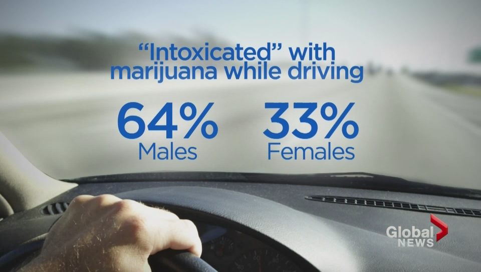 Pot Smokers Not Only Thing High on 4/20 - Traffic Accidents Too