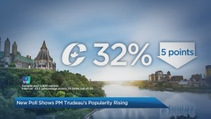 New poll shows Trudeau's popularity is rising