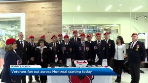 Remembrance Day poppy campaign begins in Montreal