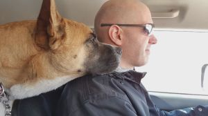 Toronto Humane Society's longest resident dog finds 'forever' home