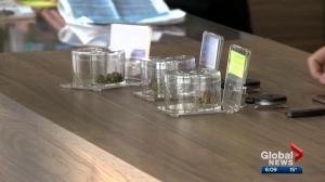 Demand for legal marijuana puts strain on supply in Edmonton area