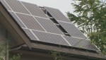 BC Hydro considers cancelling solar power incentive