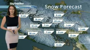 B.C.'s South Coast could see snowfall on Tuesday