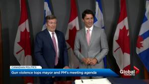 Justin Trudeau, John Tory meet to discuss gun violence