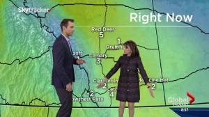 Actress Kate Linder does weather for Global Calgary