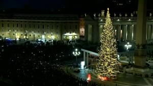 Vatican unveils Christmas tree