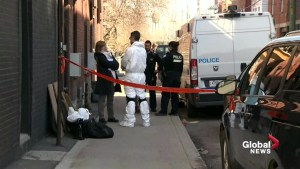 Bones discovered in Saint-Henri