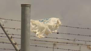 Moose Jaw Plastic Bag Ban