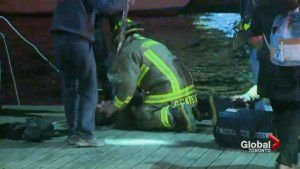 Drowning man saved by residents near Toronto's Queens Quay