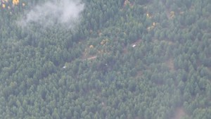 Aerial view of plane crash site that killed 4, including former Alberta Premier Jim Prentice