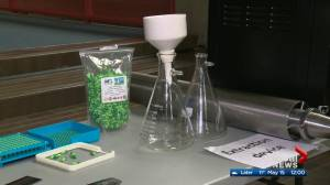 EPS warns about cannabis extraction lab dangers