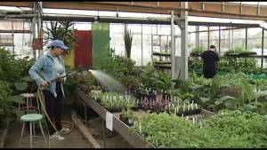 Gardeners in Lakefield gather to discuss the growing season