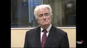 Radovan Karadzic, ex-Bosnian Serb leader, sentenced to life by UN