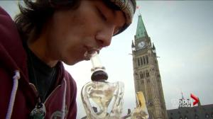 Pot smokers demand grace period before cannabis legalization
