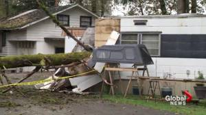 Southwest B.C. cleans up from major fall storm