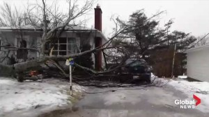 New Brunswick ice storm knocks out power, causes damage