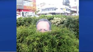 B.C. woman's idea for #gardenspicer goes viral