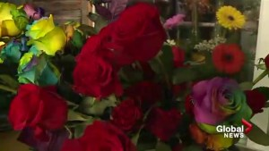 Women collecting Mother's Day flowers for Fort McMurray moms
