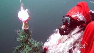 Russians celebrate with underwater Santa and tree