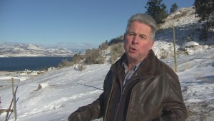 Petition launched against Penticton winery hotel proposal