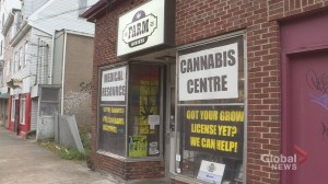Halifax dispensary owner vows to stay open in face of cannabis legalization