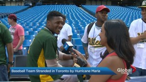 Baseball team stranded in Toronto by Hurricane Maria