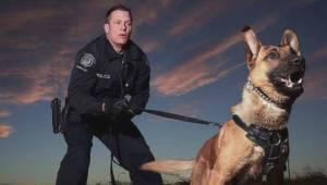 Child bitten by off-duty Calgary police dog