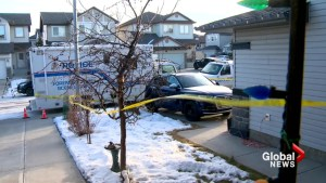 Man dies following late-night shooting in Calgary's Panorama Hills