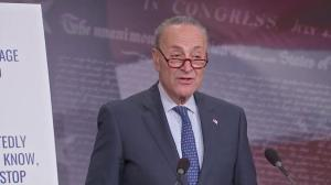 Schumer says Alabama results show Democratic party on the rise