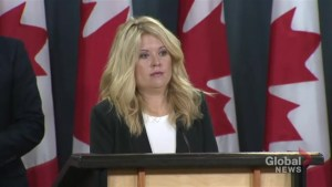 Rempel says government needs to be held accountable to a tangible plan for asylum seekers