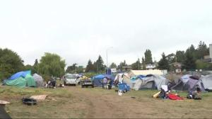 Removal of Saanich tent city highlights bigger problems